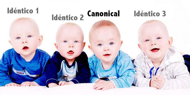 Etiqueta Canonical